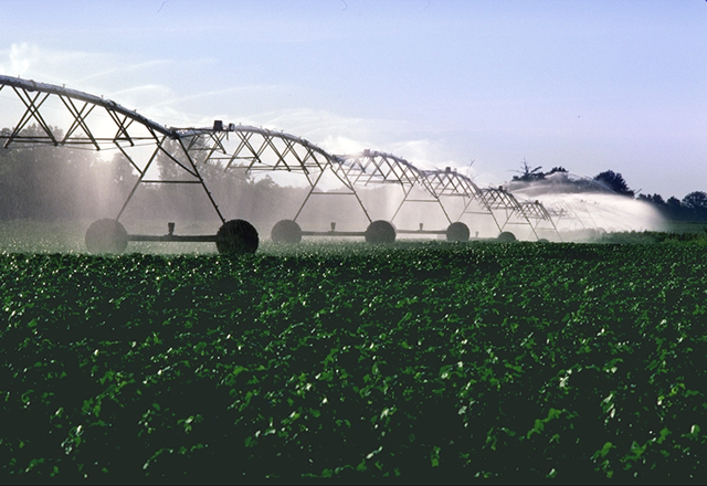 Central Pivot Irrigation